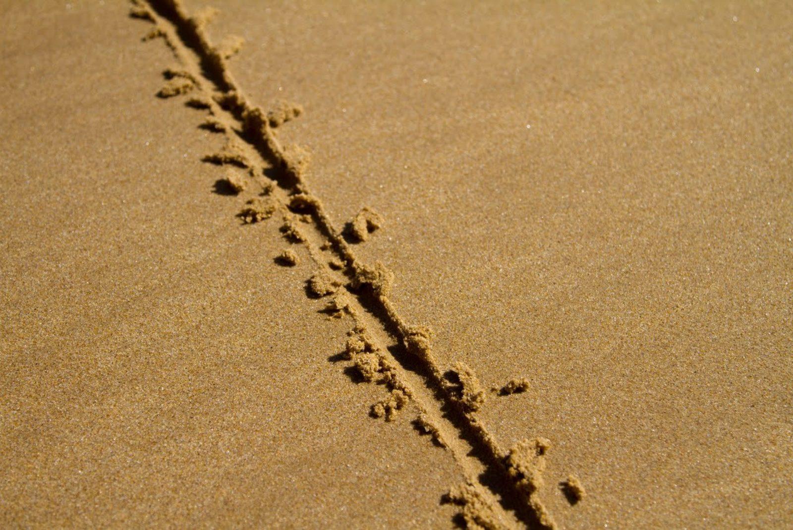 Una linea nella sabbia