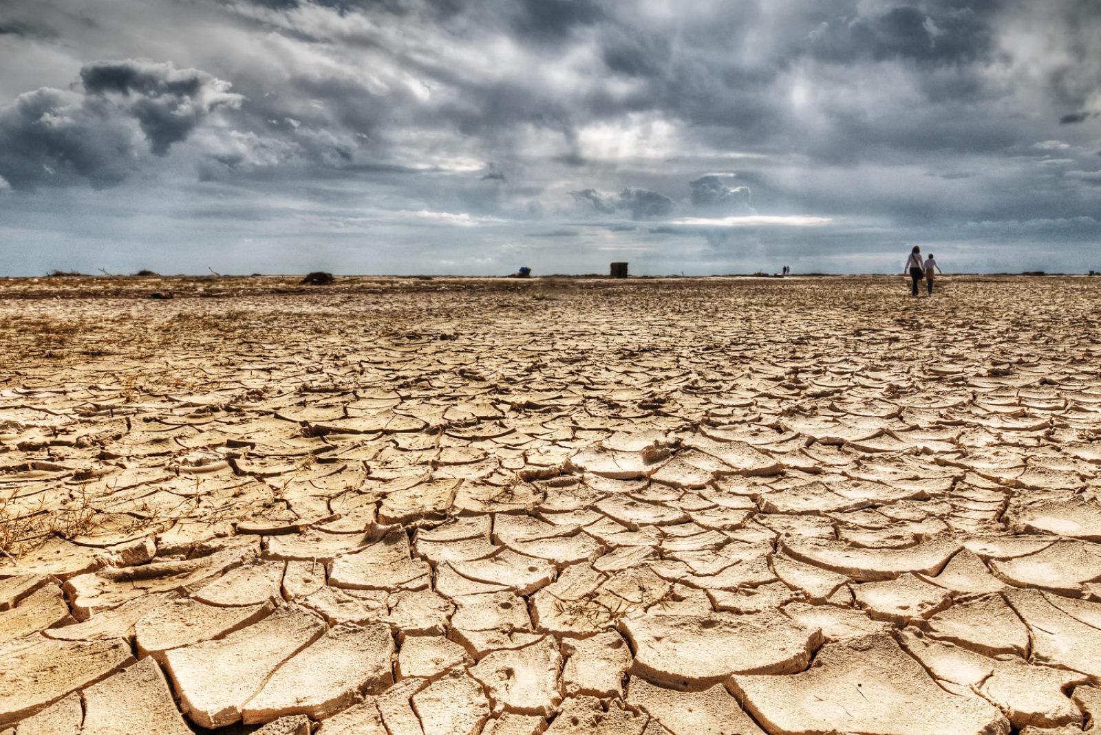 Una risorsa rinnovabile ma non inesauribile (2)