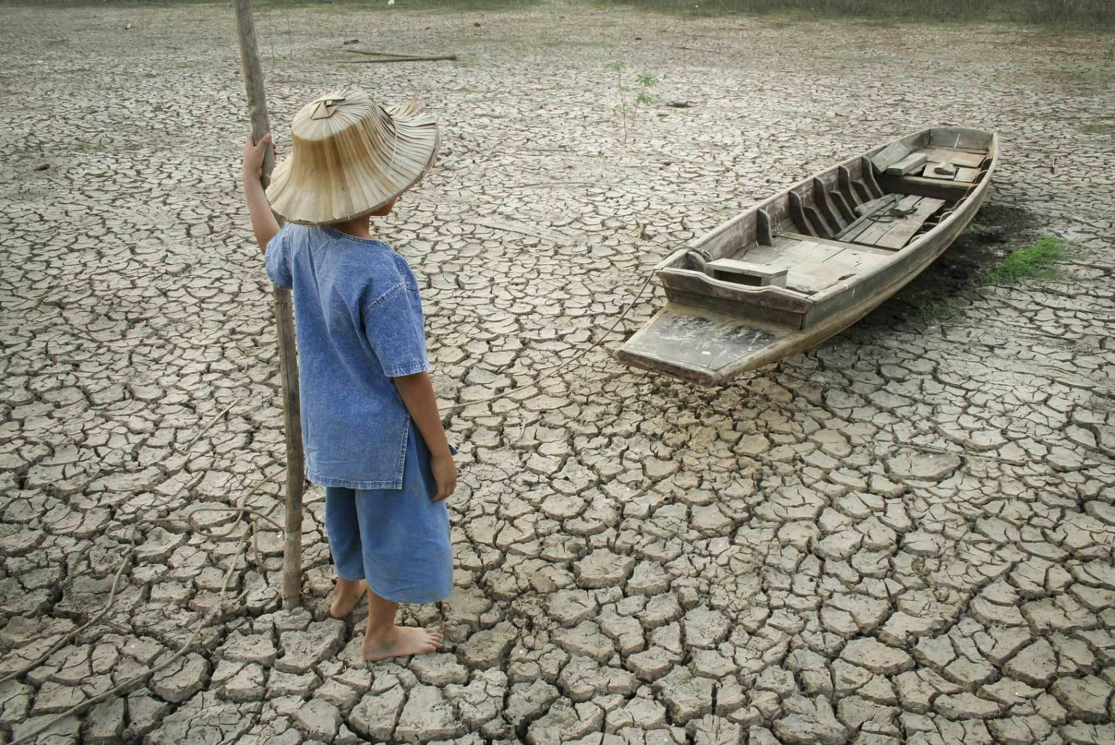Una risorsa rinnovabile ma non inesauribile (4)